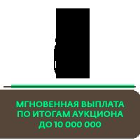 мгновенная выплата до 10 млн рублей